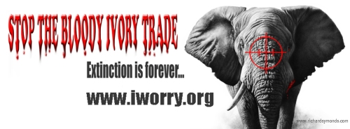 Stop-Ivory-FB-banner-iworry
