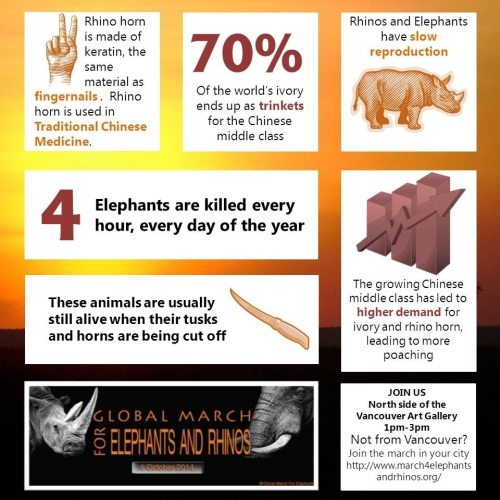 elephant_infographic_updated